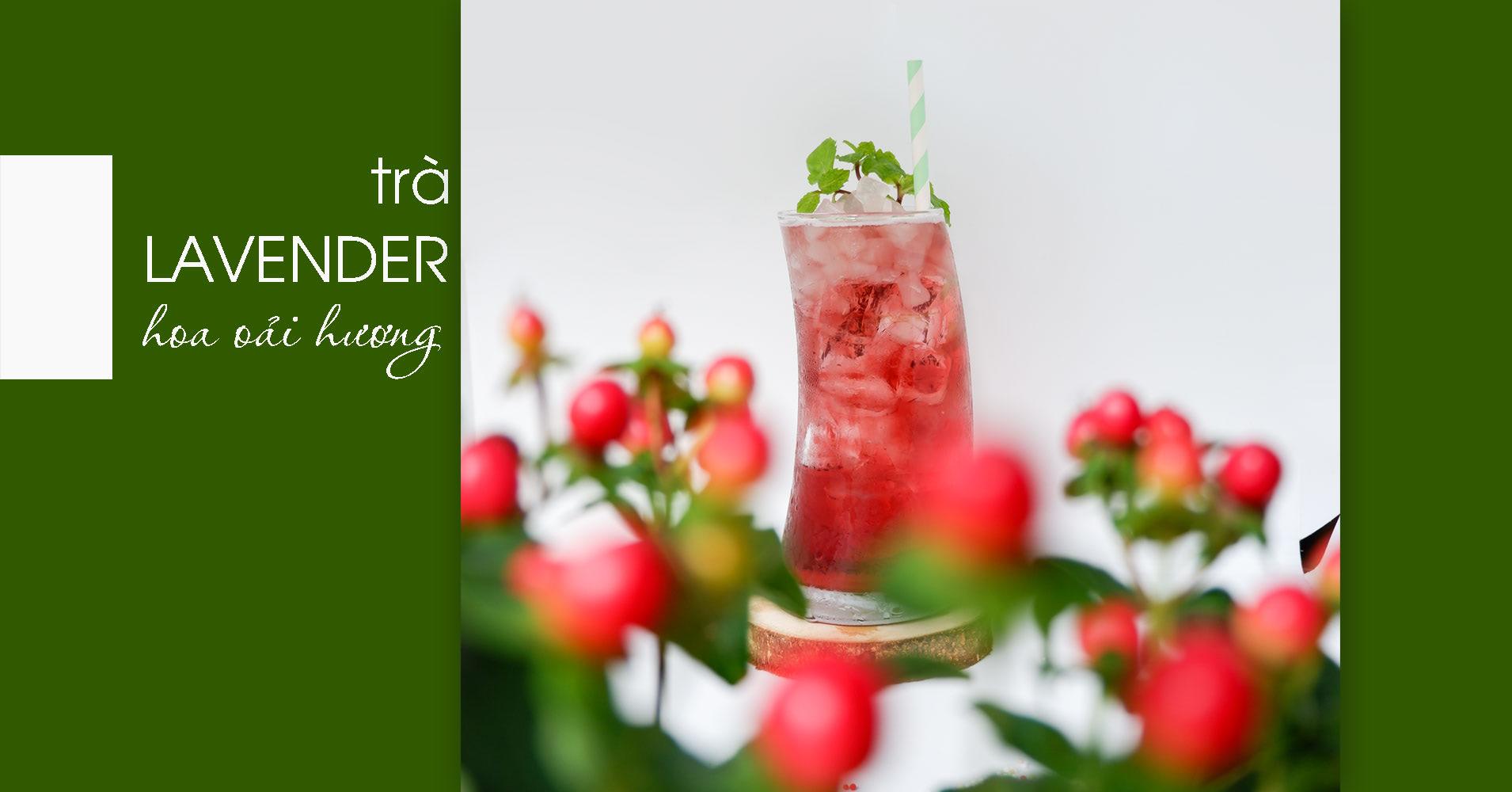 công thức trà lavender hoa oải hương