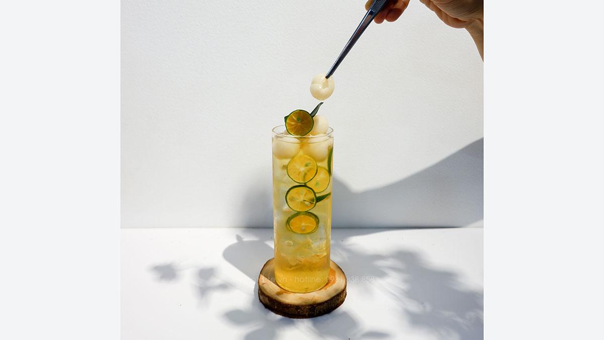 công thức trà kumquat nha đam long nhãn